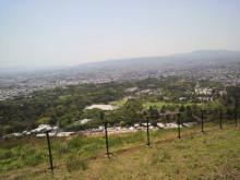 コアラフレンズ つるはら耳鼻科(奈良市) スタッフブログ-2012042813250000.jpg