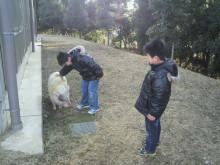 コアラフレンズ つるはら耳鼻科(奈良市) スタッフブログ-2013021016120001.jpg