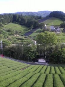 コアラフレンズ つるはら耳鼻科(奈良市) スタッフブログ-100529_1701~0002.jpg