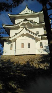 コアラフレンズ つるはら耳鼻科(奈良市) スタッフブログ-201011241540000.jpg